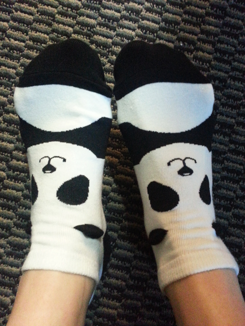 The time I got panda socks and rocked the hell out of them